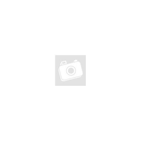 Melegíthető plüss mopsz kutya Beddy Bear